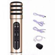 Mic-Karaoke-LiveStream-C6-1-6-300×300