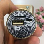 Mic-kèm-loa-Karaoke-cao-cấp-YS68-smartTNT.vn_6