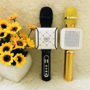 mic-kd-08s.2