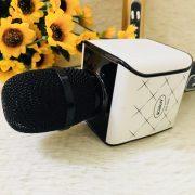 mic-kd-08s.6