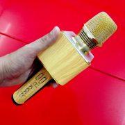 microk-karaoke-bluetooth-ok-09-gia-go-2-500×500