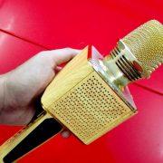 microk-karaoke-bluetooth-ok-09-gia-go-3-500×500