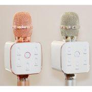 tosing-q10-plus-microphone-karaoke-3-in-1-1